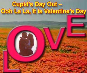 Cupid's Day Out - Ooh La La, It is Valentine's Day