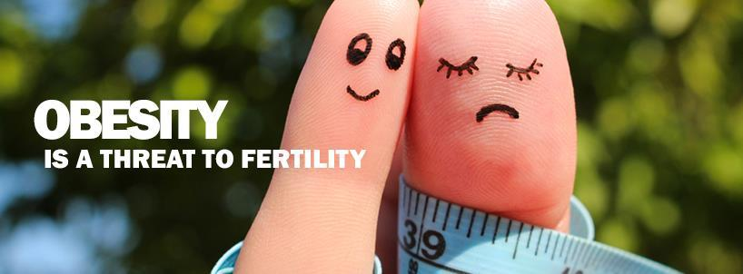 Obesity and Fertility Treatments at Blosssom Fertility Centre