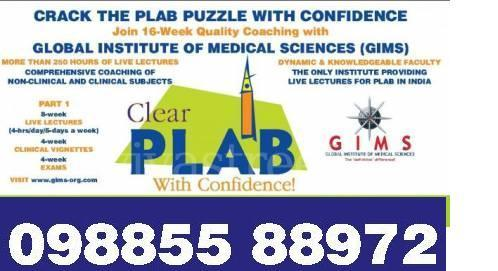 plab training